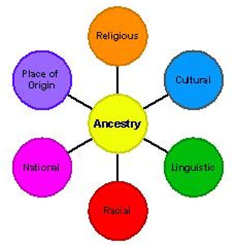 Race culture identity essay